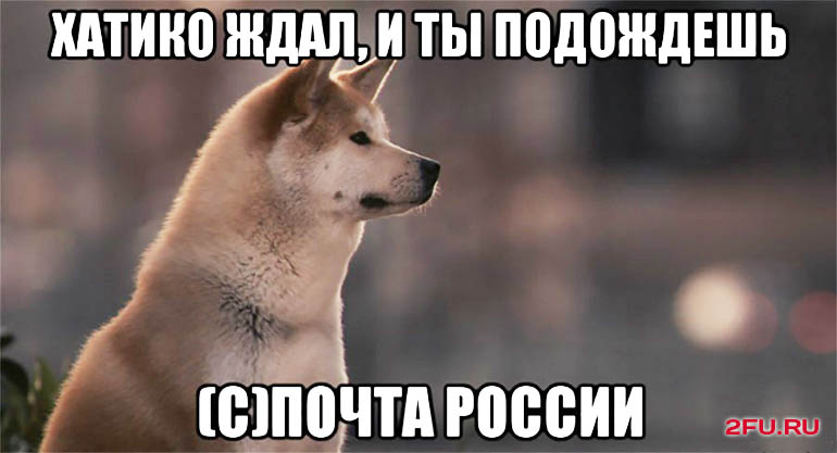 хатико почта россии